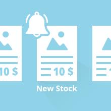 Customer Item Stock Alert for Magento 2